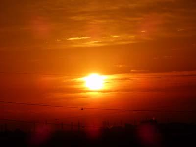 12.4朝陽.JPG