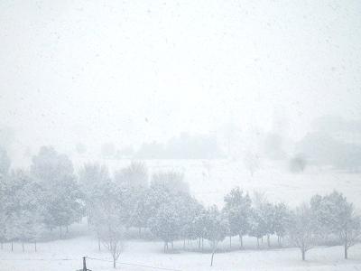 180122イオン方面雪.png