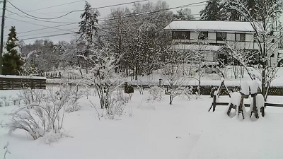 180301積雪.png