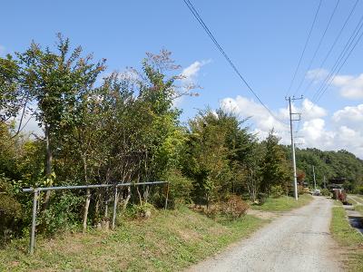 八ヶ岳グリーンサービス.png