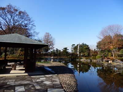 善導寺庭園.JPG