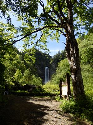 平湯大滝が見えた.png