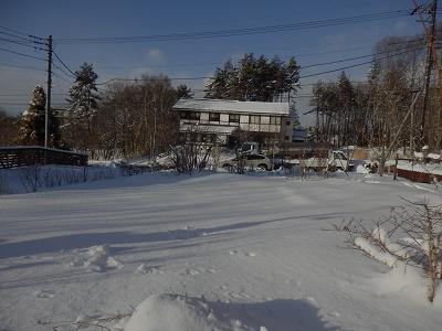 庭が雪原.png