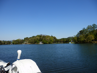 松原湖白鳥と湖.png