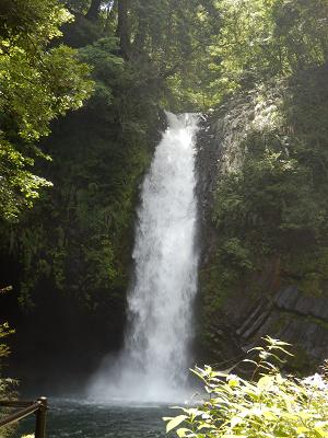 浄蓮の滝.png