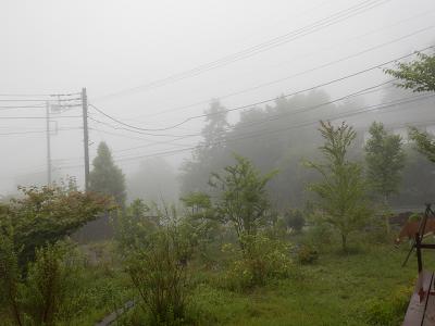 濃霧7.30.png
