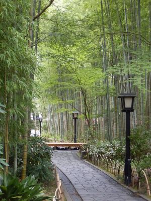 竹の小径.png
