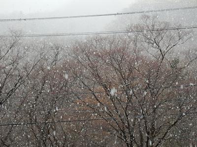 雪の作並温泉.png