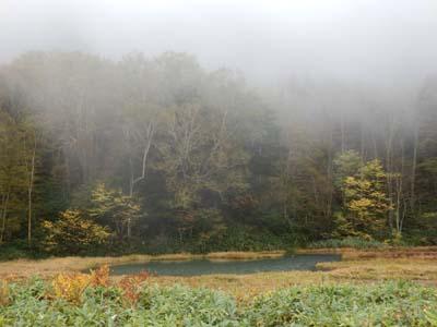 霧の池.JPG
