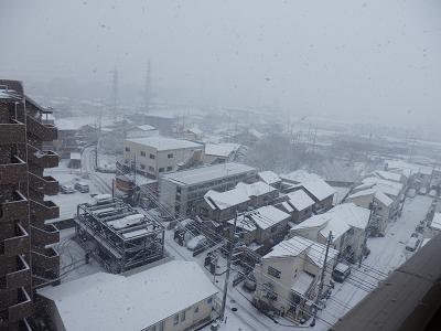 180122立川雪.png