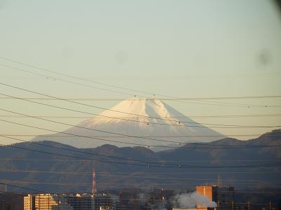 181115朝の富士.png