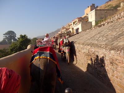アンベール象に乗る.png