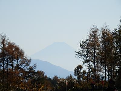 丘の公園富士.png