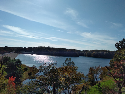 多摩湖サイクリング181117.png