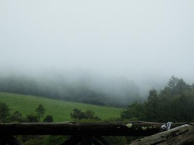 霧のまきば公園.png