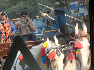 india 馬車.png